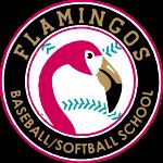 Flamingos baseball and softball school