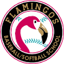 Flamingos baseball and softball school
